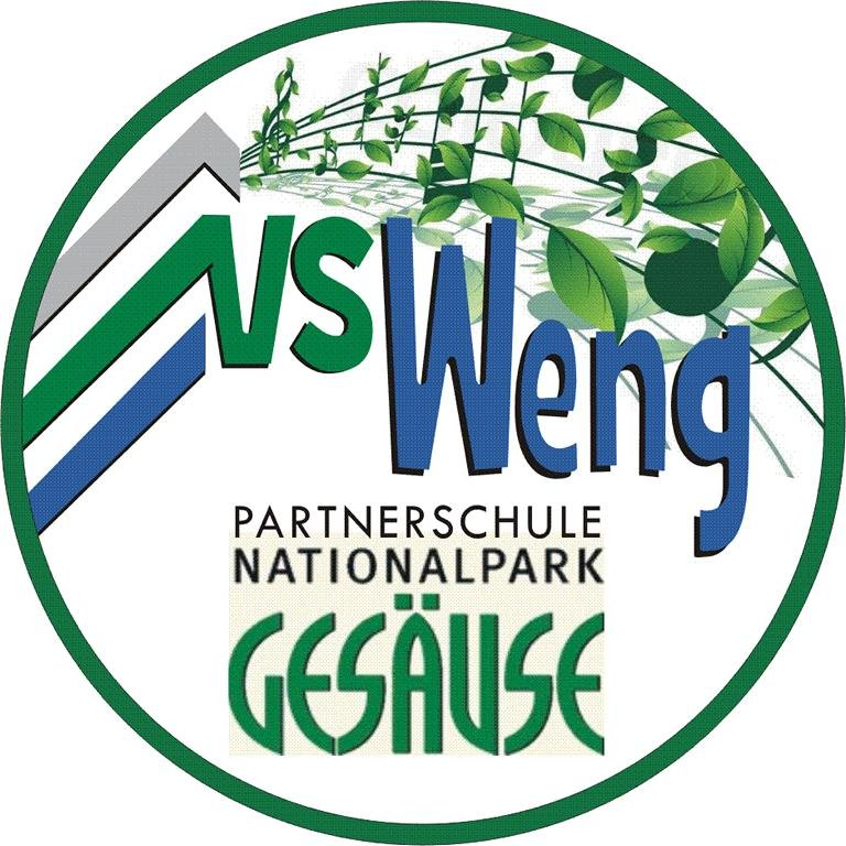 K1024_VS Weng_Partnerschule..JPG